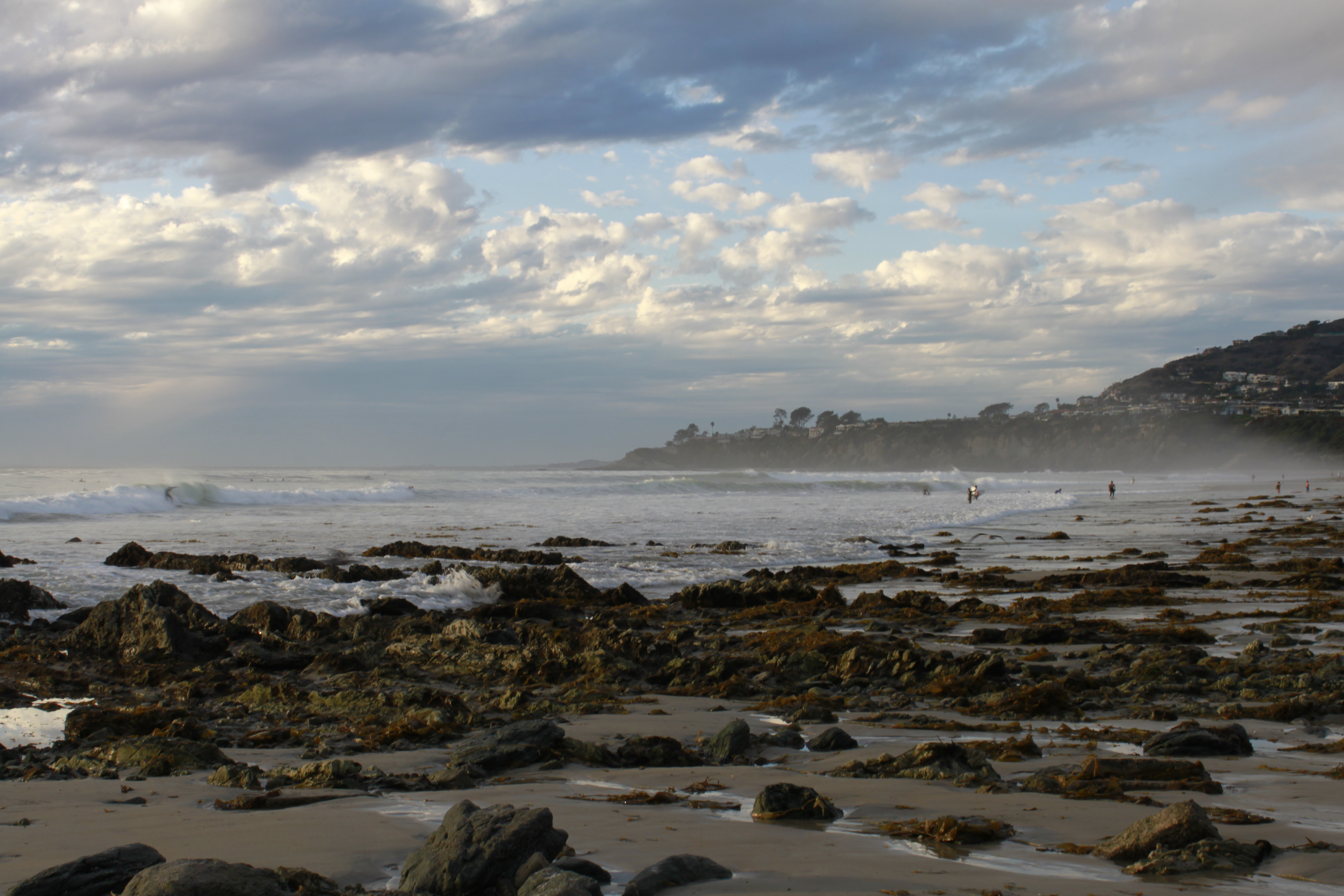 Salt Creek's kelp beds end up on the sand sometimes.
