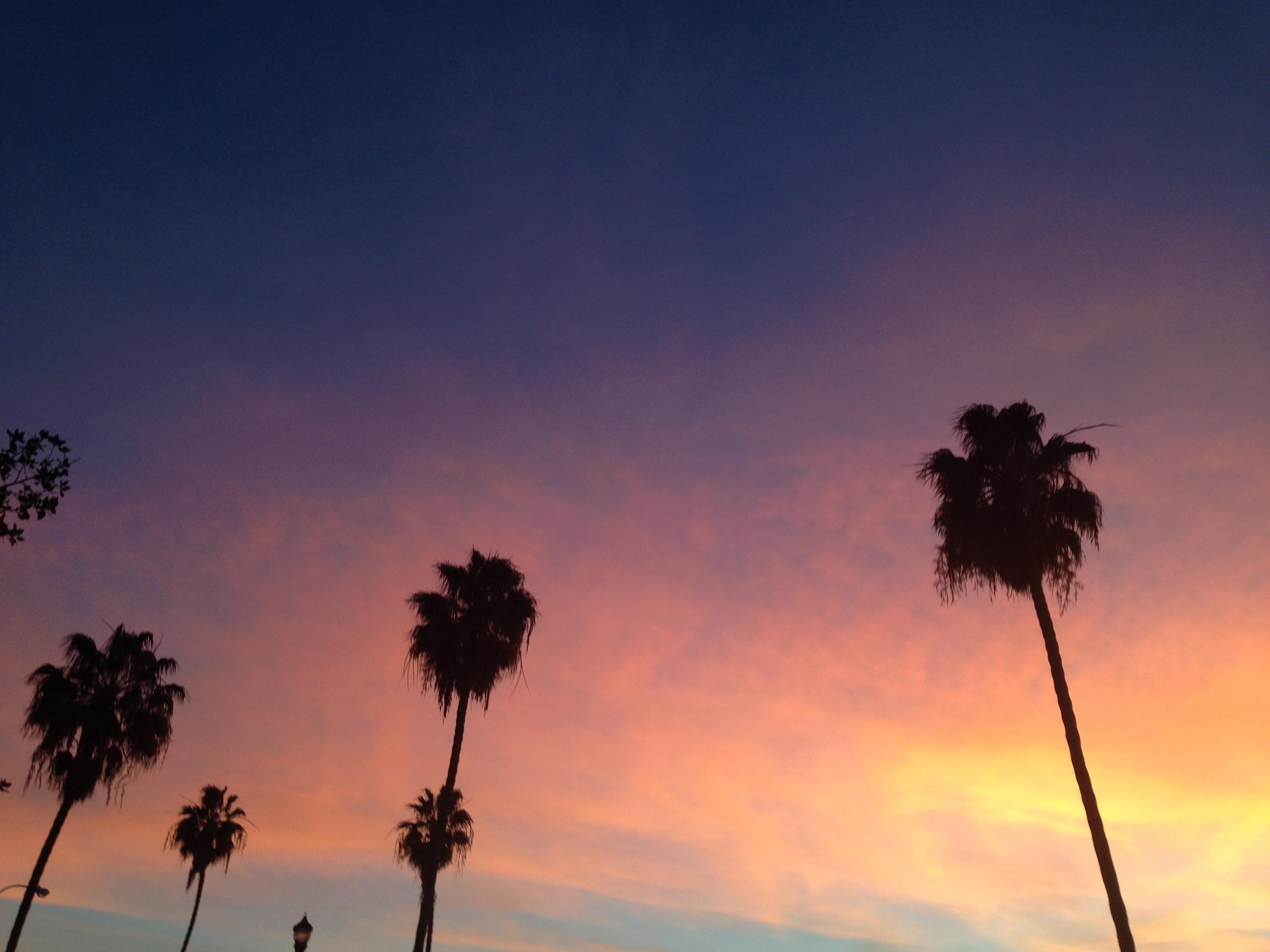 sunset-sc