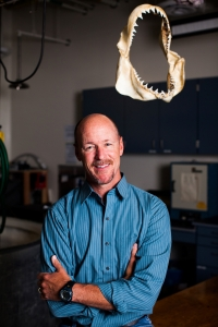 Pictured: Dr. Chris Lowe, professor of marine biology and director of CSULB's Shark Lab. Photo credit: Cal State Long Beach Shark Lab