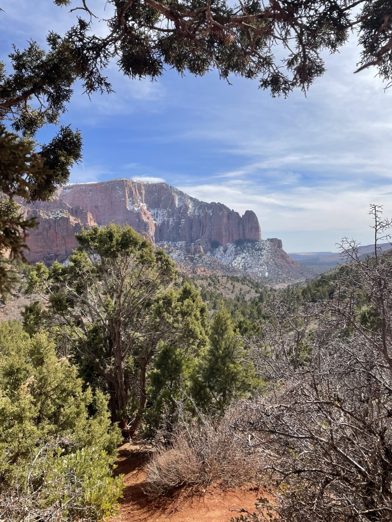 trees framing the outlook to Kolob Canyon
