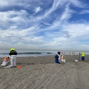 cleanup crews pick up tar off the sand in Newport Beach California